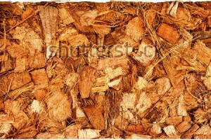stock-photo-coconut-coir-husk-fiber-chips-surface-border-close-up-isolated-on-white-background-138998534 (1)